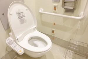 reform-toilet