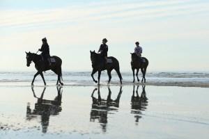海岸調教3