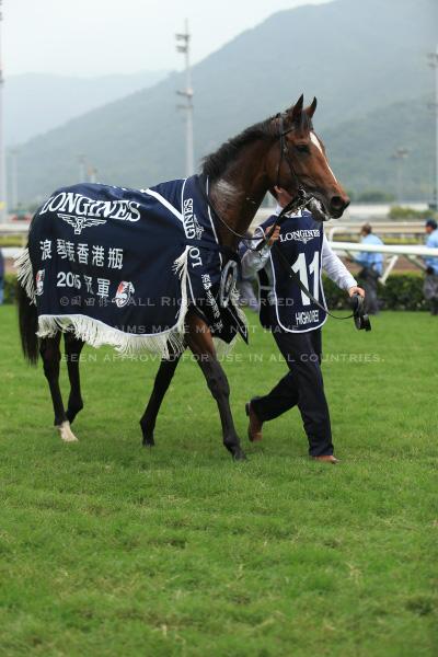 15香港ヴァーズ9