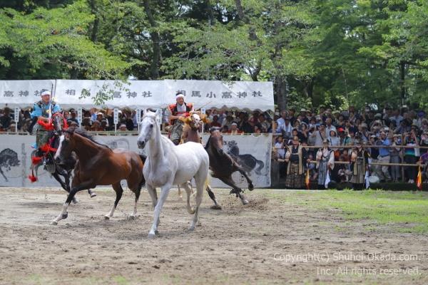 17相馬野馬追野馬懸134