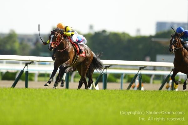 18京都新聞杯2