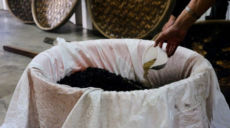 Traditional Brewing Art of Taiwan Black Bean Soy Sauce