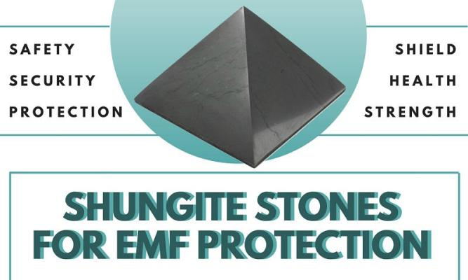 shungite-stone-from-Russia-to-protect-from-electromagnetic-radiation