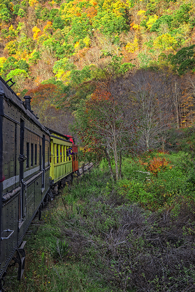 Durbin Rocket Train