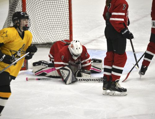 How Can I Help My Goalie Develop? Part 1