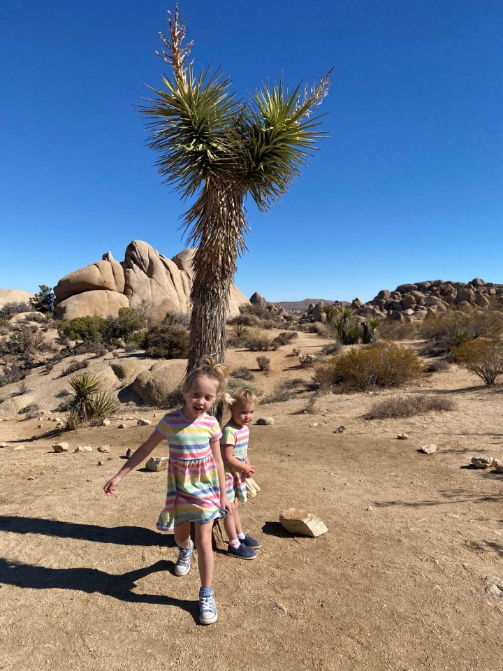 Photo of girls running through Joshua Tree National Park in front of a small Joshua Tree.