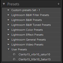 Lightroom Develop Presets Panel