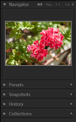 Lightroom Develop Right Panel