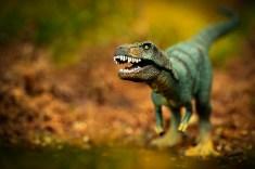 Dino-07656