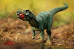 Dino-07768