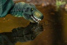 Dino-08018