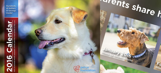 The 2016 Petco Foundation Calendar is Out!