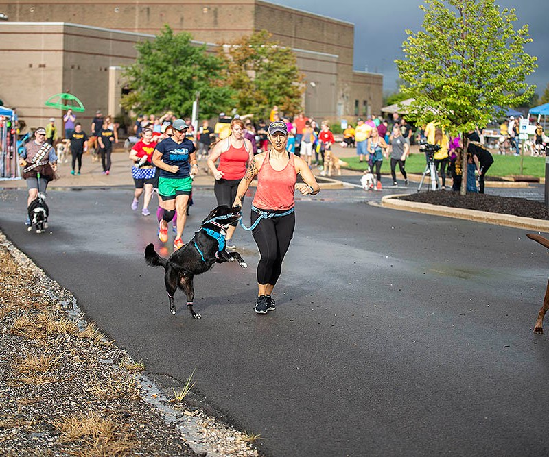 2019 Running with the Dogs