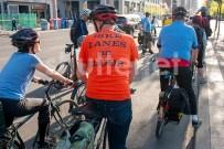 Bike Lanes on Bloor