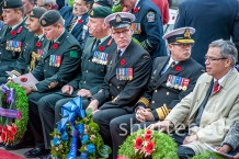 Remembrance Day 08