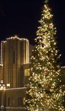 Arizona Biltmore Christmas Tree