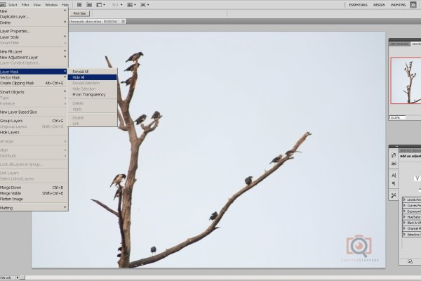 Apply layer mask in photoshop
