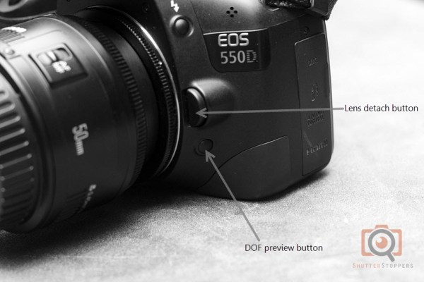 Use of DOF preview button for reverse lens macro photography