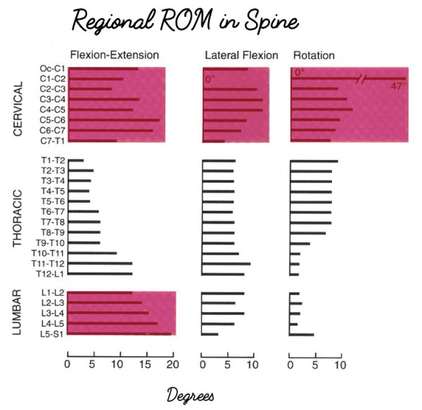 Regional ROM in Spine
