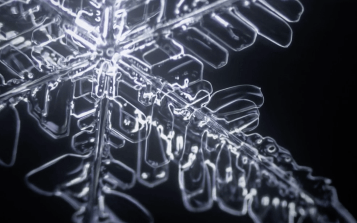 Formation of Snowflakes Captured in Microscopic Time-Lapse Video