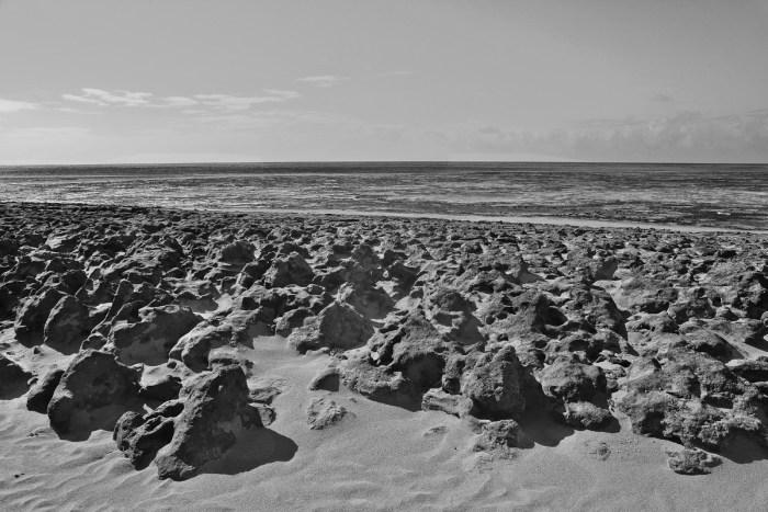 The beach full of stones of Green Island