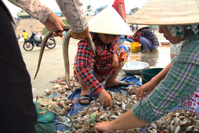 Vietnam local fish market