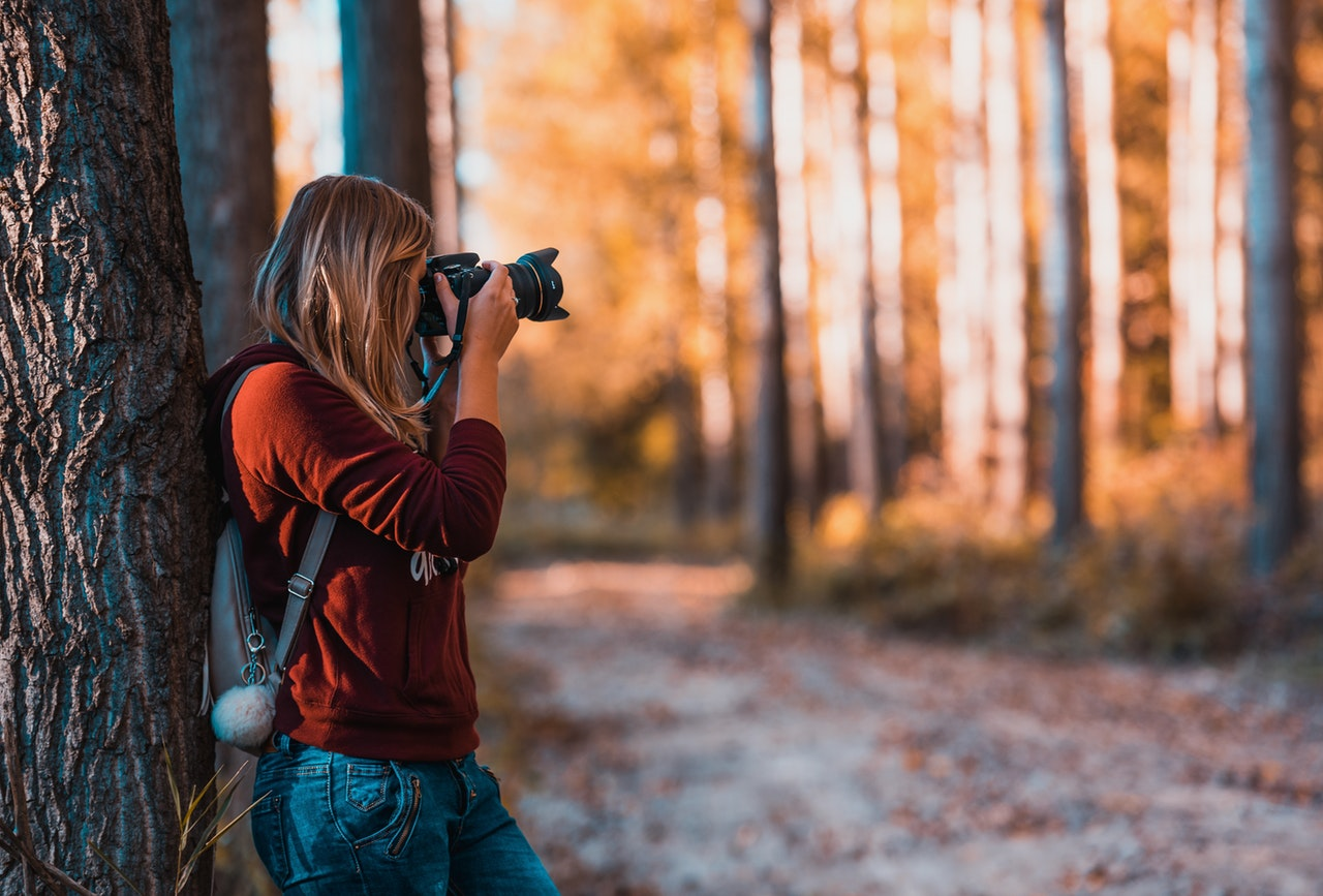 Begginer photography tips and tricks