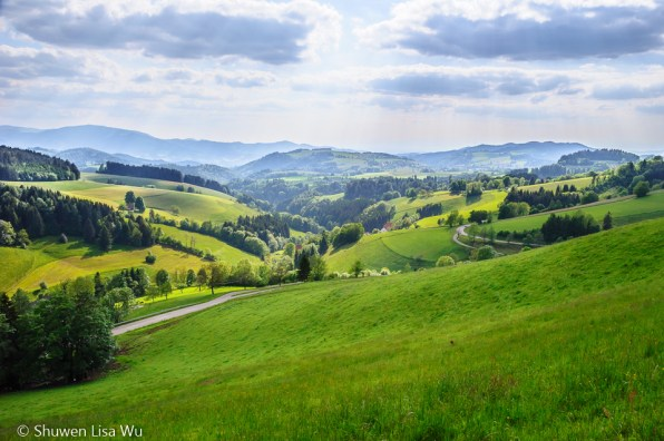 Black Forest Landscape, Germany.
