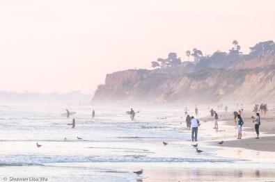 Beach Life La Jolla