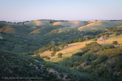 Last light touches wavy hills at Adelaide, Paso Robles, California, April 2016.