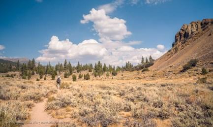 Alex on Trail at Leavitt Meadows, Bridgeport, California, September 2016.