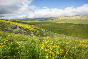 Temblor Range and Elkhorn Plain view from Elkhorn Hills, Carrizo Plain National Monument, California. March 2017.