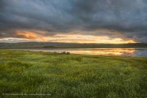 Sunset at Soda Lake, Carrizo Plain National Monument, California. March 2017.