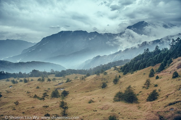 Misty Hehuan Shan, central Taiwan.