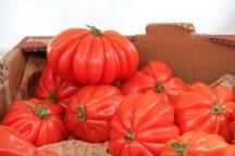 עגבניות מיוחדות גם אפשר למצוא, ניסינו אחת כבר ביום הראשון
