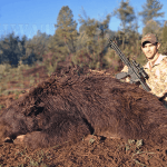 300 Black(Bear)Out – Taking Down Black Bears with the Barnes Bullets 120 Grain VOR-TX 300 Blackout