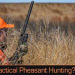Yes, Tactical Pheasant Hunting is a Thing and Here's Why You Want To Try It