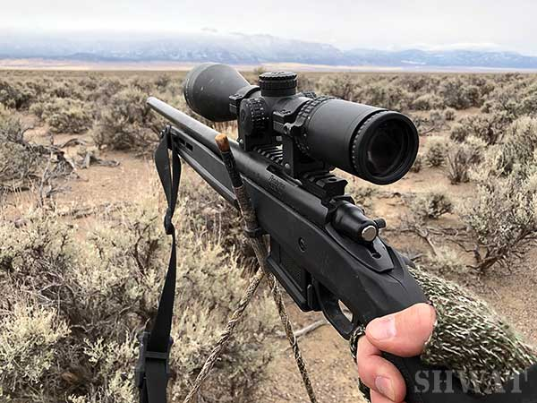 Remington 700 coyote hunting