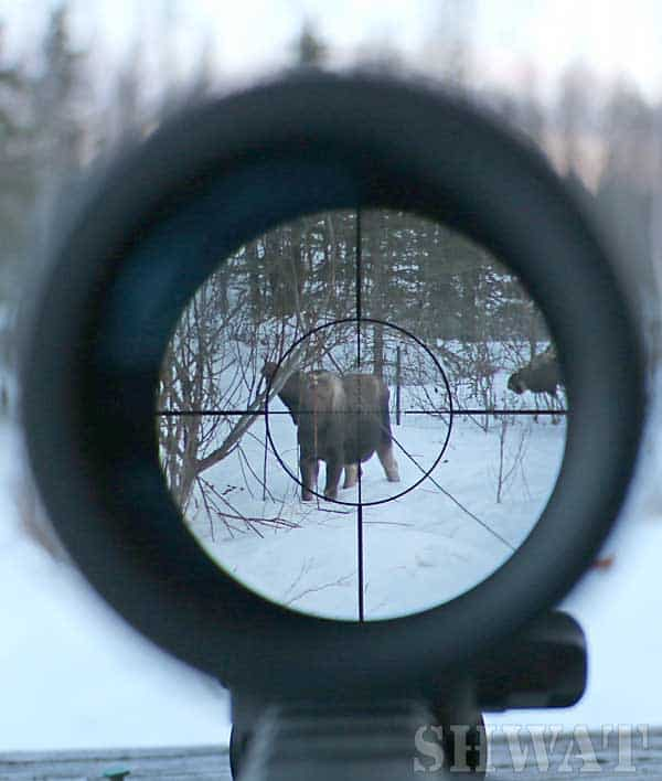 mid range hunting scope