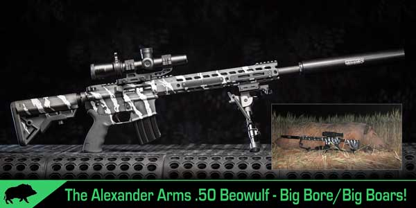 Alexander Arms 50 Beowulf Review