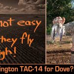 Remington TAC-14 Not-A-Shotgun for Dove Hunting? Yeah, We Try That!
