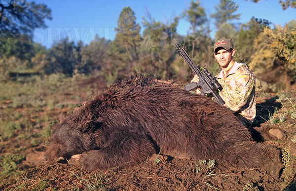 300 Blackout Black Bear