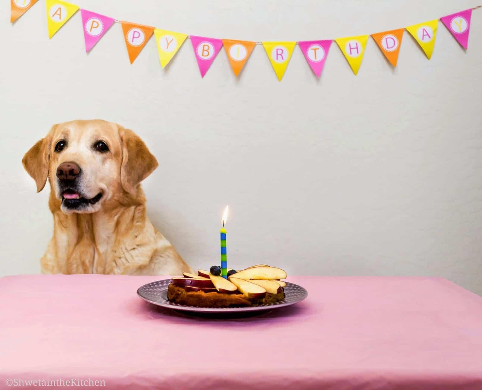 Dog Birthday Cake Archives Shweta In The Kitchen