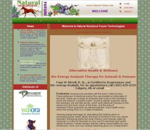 Natural-Future Website 2003 HTML