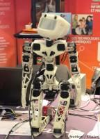 Robot Poppy
