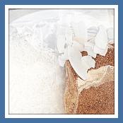 Coconut Dry Goods