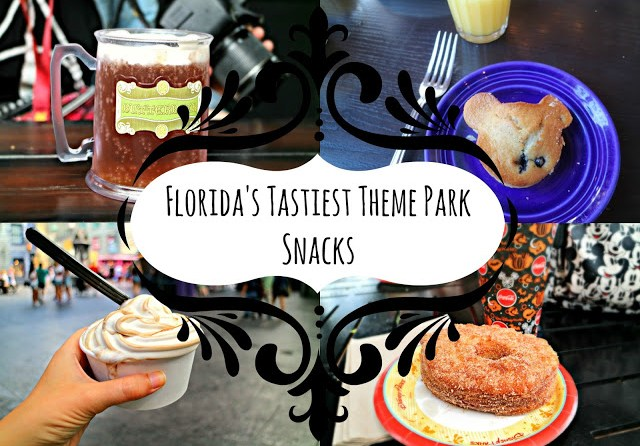 Theme Park Snacks