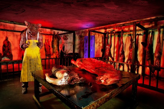 Haunted House Room Ideas For Adults House Ideas