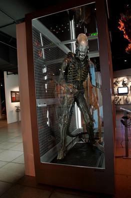 Paul Allens Museum Gets a Makeover  WSJ