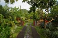 Miami Landscape Designer Raymond Jungles - WSJ